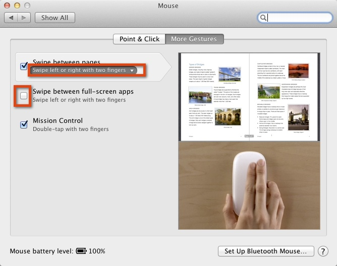 Magic Mouse Setting in Lion